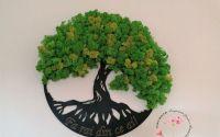 Copacul vietii licheni stabilizati