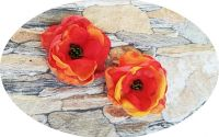 set flori portocaliu - corai