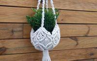 Agatator plante