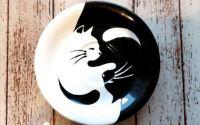 Platou yin yang pisici