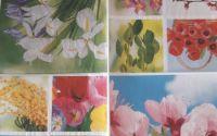 servetel flori