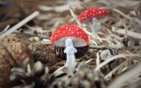 Brosa din fetru ciupercuta - Amanita Muscaria