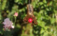 Red Dodder