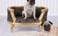 Canapea caine din lemn masiv auriu
