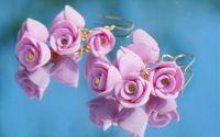 Cercei Trandafiri - rose