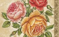 Servetel trandafiri infloriti