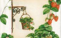 Servetel Cascada de capusuni