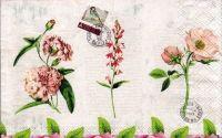 Servetel Scrisori si flori