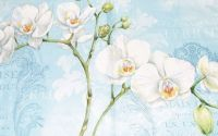 Servetel Orhidee
