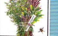 Servetel Herbes de Provence