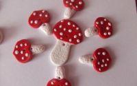Nasturei- ciupercute 4